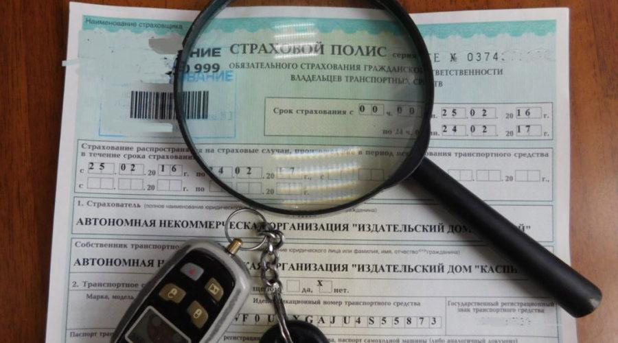 фото проверки страховки автомобиля